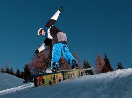 Marko Pirc- frontside boardslide on double kink rail / snowpark Cerkno, Slovenia